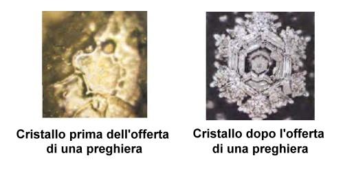acquainformata-clusters.jpg