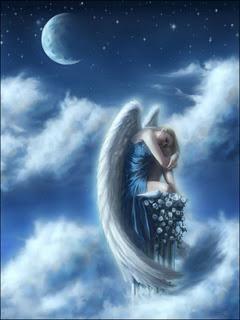 angelodonna