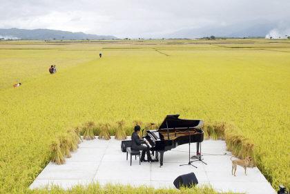 pianistaTaiwan.jpg